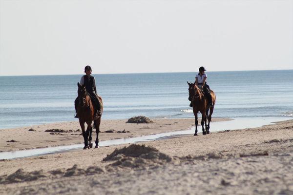 Activités balade à cheval Porto-Vecchio